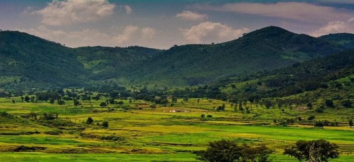 ananthagiri-hills-araku