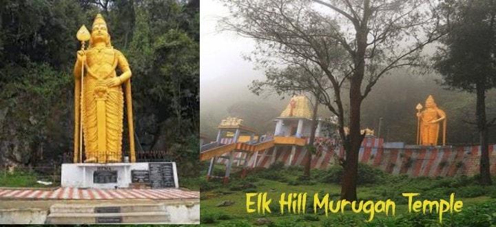 elk-hill-murugan-temple-ooty