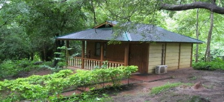 tyda-nature-camp