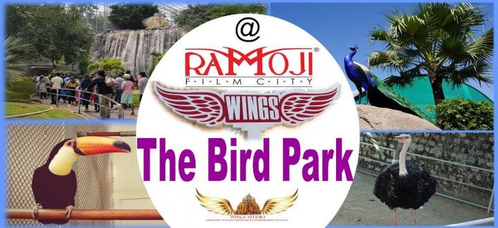 Wings-Bird-Park-at-Ramoji-Film-City