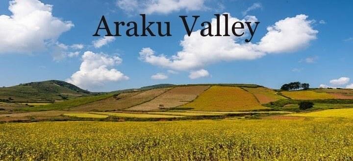 history-of-araku-valley