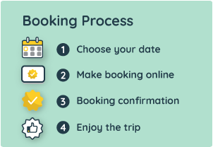 Why Book with Bestbus